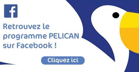 programme pelican signature