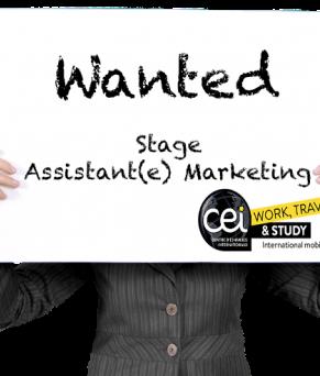 Stage assistant(e) Marketing à Londres