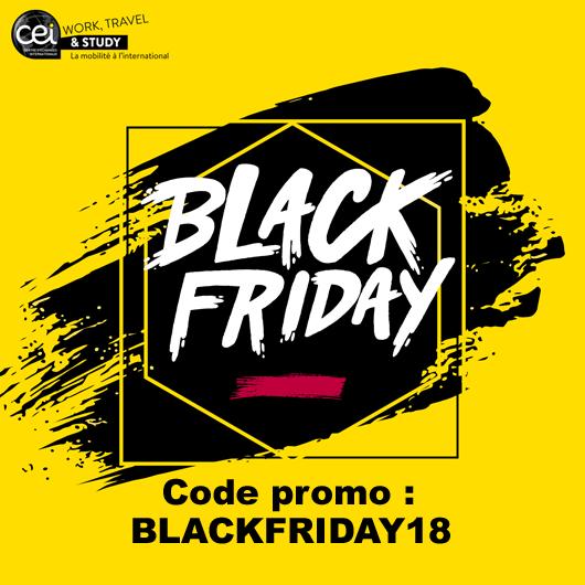 Offre spéciale pour le Black Friday - CEI Work Travel and Study