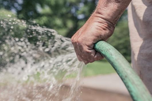 garden-green-hose-internship-dublin