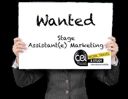 Offre de stage - Assistant(e) Marketing