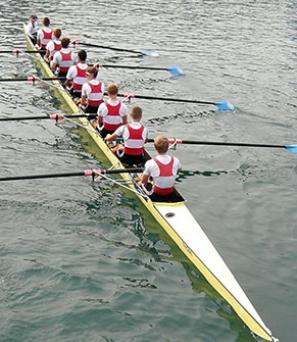 course_aviron_tamise